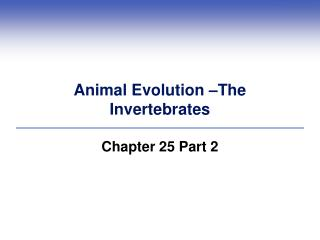 Animal Evolution –The  Invertebrates