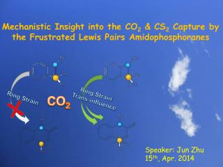 Mechanistic Insight into the CO 2  & CS 2  Capture by the Frustrated Lewis Pairs Amidophosphoranes