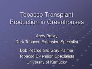 Tobacco Transplant Production in Greenhouses