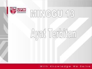 MINGGU 13