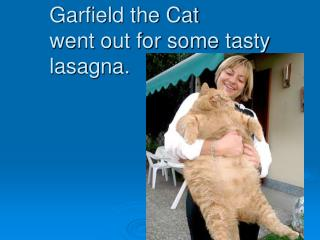 Garfield the Cat went out for some tasty lasagna.