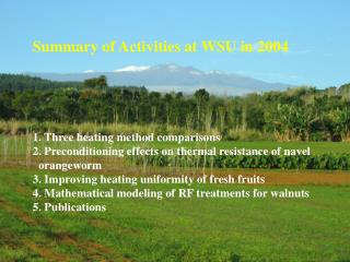 Summary of Activities at WSU in 2004 1. Three heating method comparisons