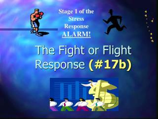 The Fight or Flight Response  (#17b)