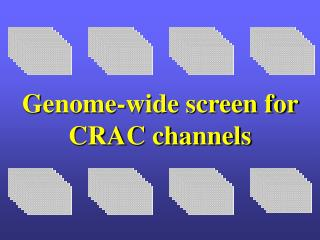 Genome-wide screen for CRAC channels