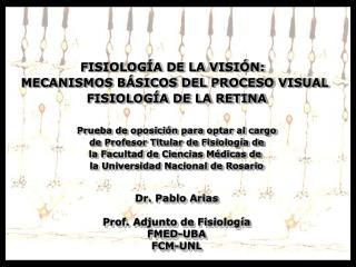 FISIOLOGÍA DE LA VISIÓN:   MECANISMOS BÁSICOS DEL PROCESO VISUAL