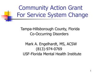 Community Action Grant    For Service System Change