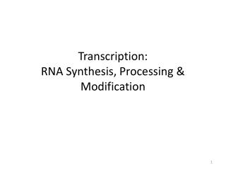 Transcription: RNA Synthesis, Processing & Modification