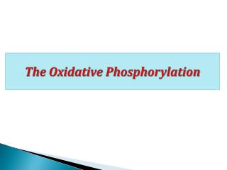 The Oxidative Phosphorylation