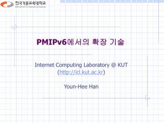 PMIPv6 에서의 확장 기술