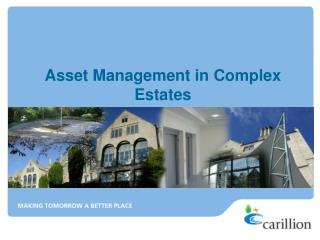 Asset Management in Complex Estates