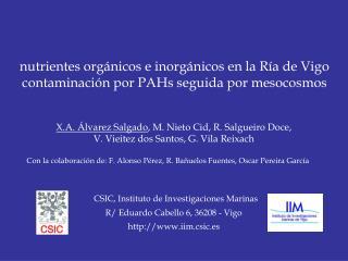 nutrientes orgánicos e inorgánicos en la Ría de Vigo contaminación por PAHs seguida por mesocosmos