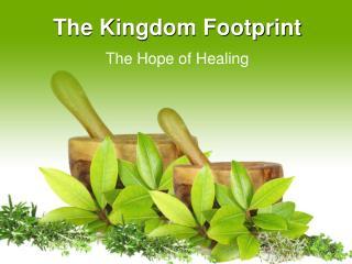 The Kingdom Footprint
