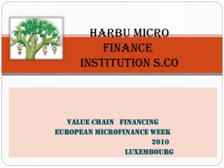 Harbu Micro       Finance        Institution S.c o
