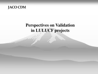 Perspectives on Validation  in LULUCF projects
