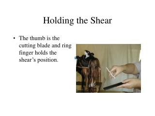 Holding the Shear