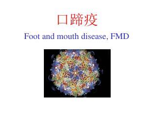 口蹄疫 Foot and mouth disease, FMD