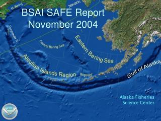 BSAI SAFE Report November 2004