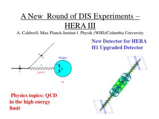 Physics topics: QCD in the high energy limit