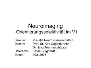 Neuroimaging - Orientierungsselektivität im V1