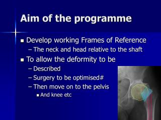 Aim of the programme