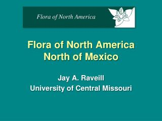 Flora of North America  North of Mexico