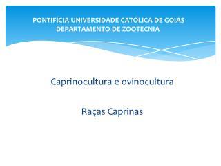 PONTIFÍCIA UNIVERSIDADE CATÓLICA DE GOIÁS DEPARTAMENTO DE ZOOTECNIA