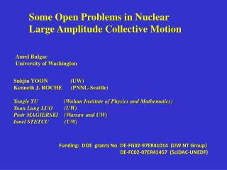 Some Open Problems in Nuclear  Large Amplitude Collective Motion