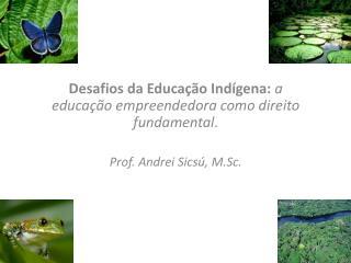 Desafios da Educação Indígena:  a educação empreendedora como direito fundamental .