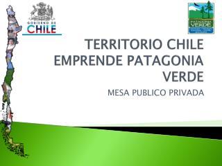 TERRITORIO CHILE EMPRENDE PATAGONIA VERDE