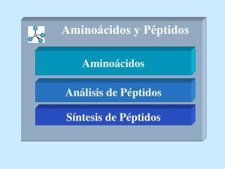 Amino�cidos y P�ptidos