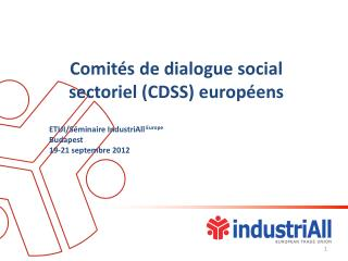 Comitésde dialogue social sectoriel (CDSS)  européens ETUI/Séminaire IndustriAll  Europe Budapest
