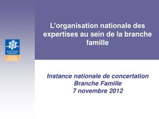 L'organisation nationale des expertises au sein de la branche famille