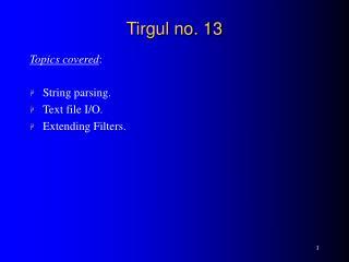 Tirgul no. 13