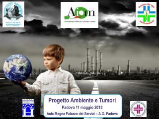 Progetto Ambiente e Tumori Padova 11 maggio 2013 Aula Magna Palazzo dei Servizi – A.O. Padova