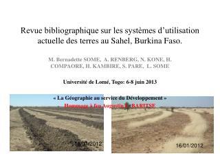 Revue bibliographique sur les systèmes d'utilisation actuelle des terres au Sahel, Burkina Faso.
