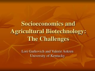 Socioeconomics and Agricultural Biotechnology: The Challenges