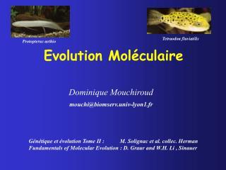 Evolution Moléculaire