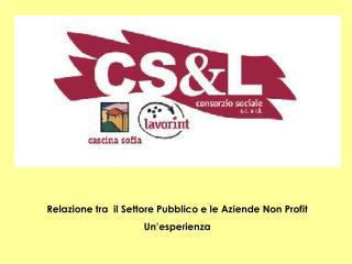 Relazione tra  il Settore Pubblico e le Aziende Non Profit Un'esperienza