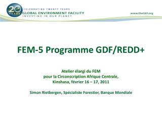 FEM-5 Programme GDF/REDD+