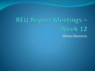 REU Report Meetings – Week 12