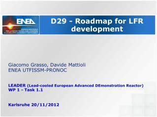 D29 - Roadmap for LFR development
