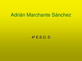 Adrián Marchante Sánchez