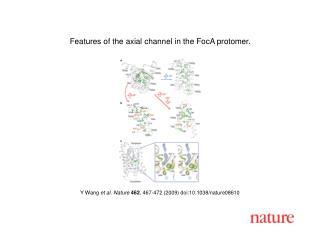 Y Wang  et al. Nature 462 , 467-472 (2009) doi:10.1038/nature08610