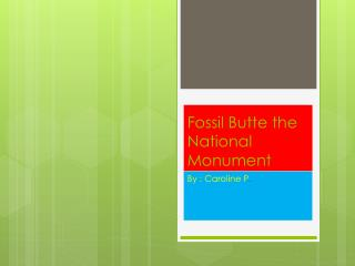 Fossil Butte the National Monument