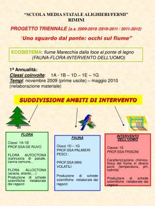FLORA Classi: 1A-1B PROF.SSA DE RUVO FLORA AUTOCTONA (cannuccia di palude, canna comune,..