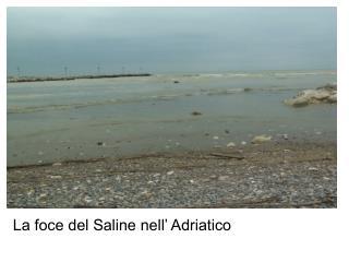 La foce del Saline nell' Adriatico