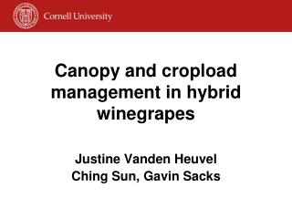 Canopy and cropload management in hybrid winegrapes