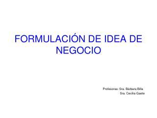 FORMULACIÓN DE IDEA DE NEGOCIO