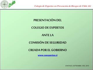 PRESENTACIÓN DEL  COLEGIO DE EXPERTOS  ANTE LA  COMISIÓN DE SEGURIDAD  CREADA POR EL GOBIERNO