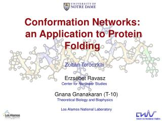 Conformation Networks:  an Application to Protein Folding